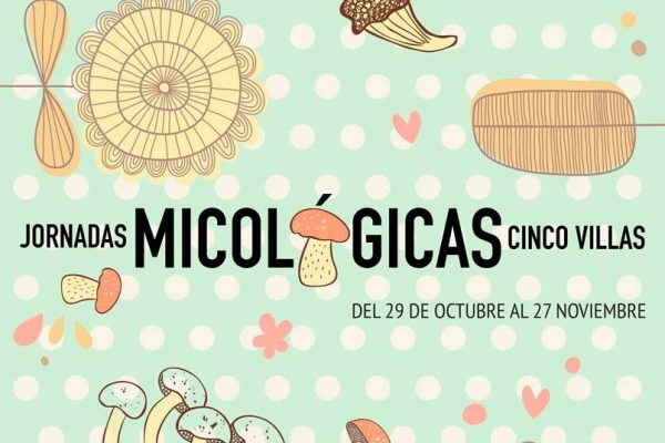 Jornadas Micológicas Cinco Villas 2016